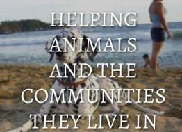 Helping animals and the communities they live in